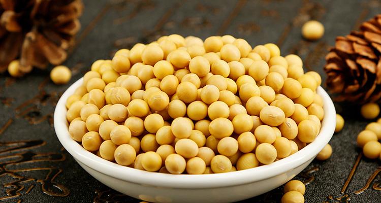 说明: 黄豆 备用