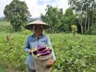 Warm Moments in China-Laos Poverty Reduction Cooperation